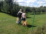Beckwith Orchards