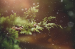 Coping With Christmas: Ways To Live Up To The Ideals You Have InMind