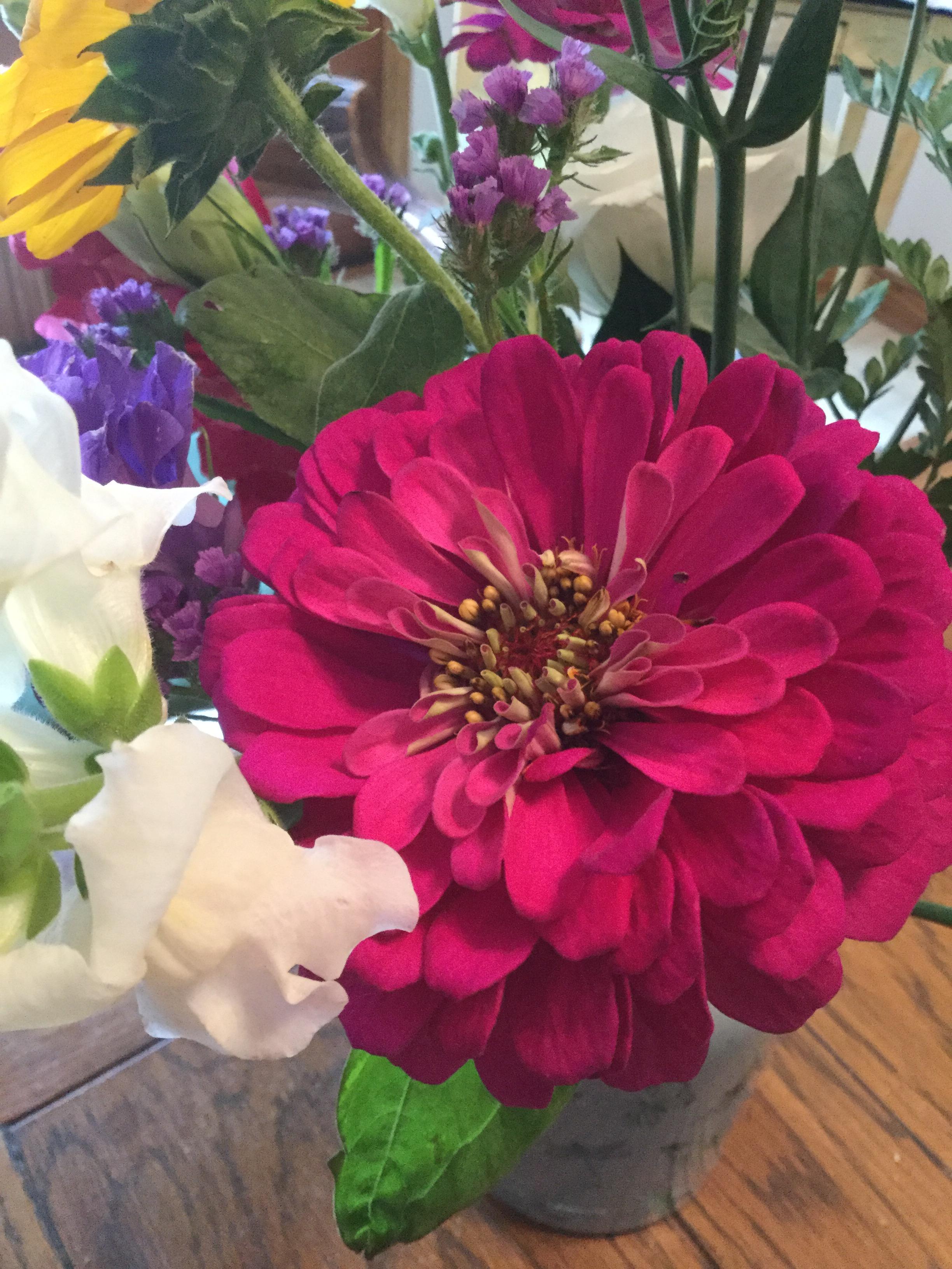 flowerrr1