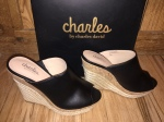If The Shoe Fits: Charles By Charles David Edition