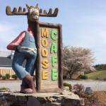 Vacation Eats: The Moose Cafe