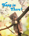 Hanging In There?